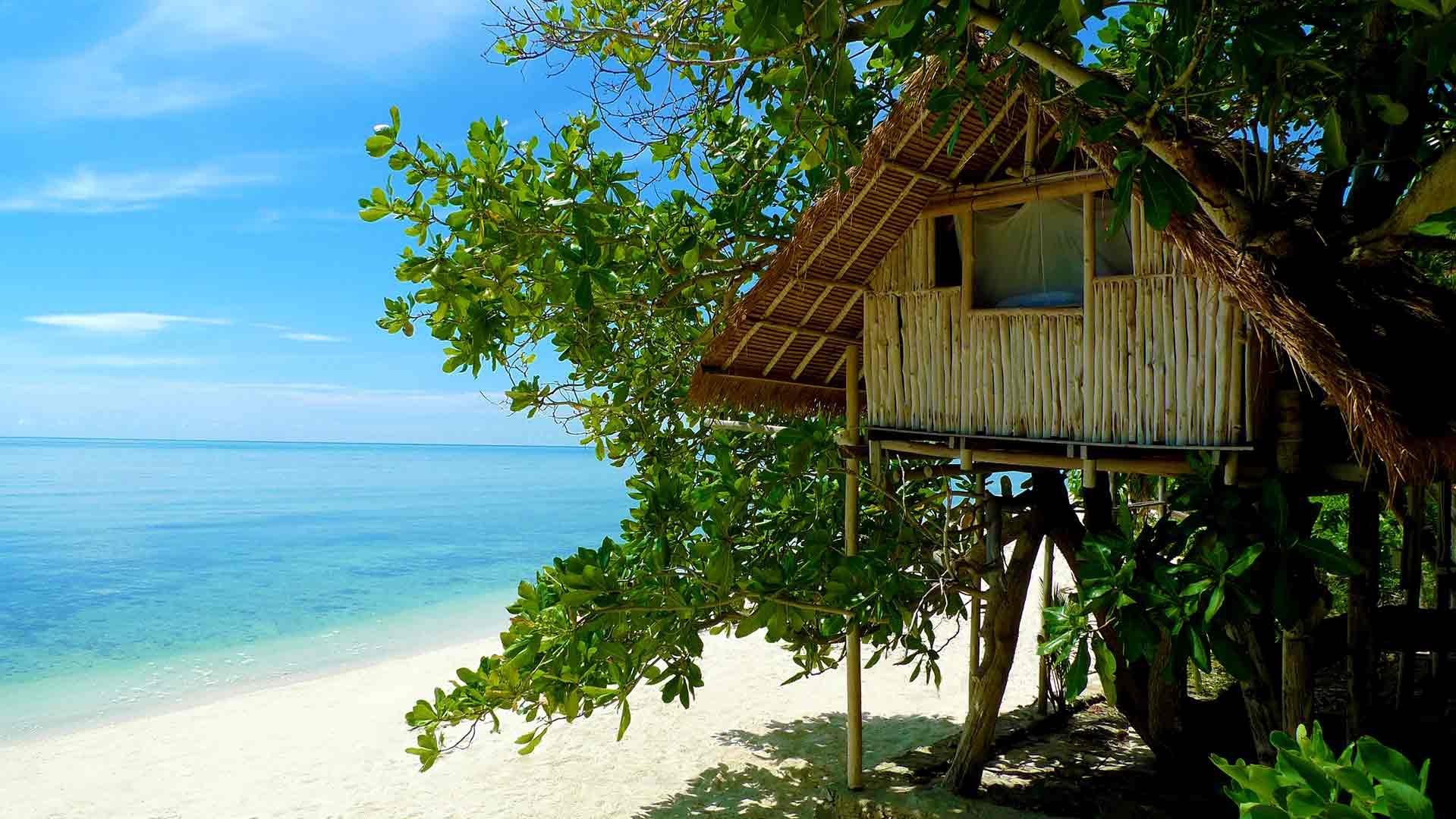 A tree house on a secluded beach