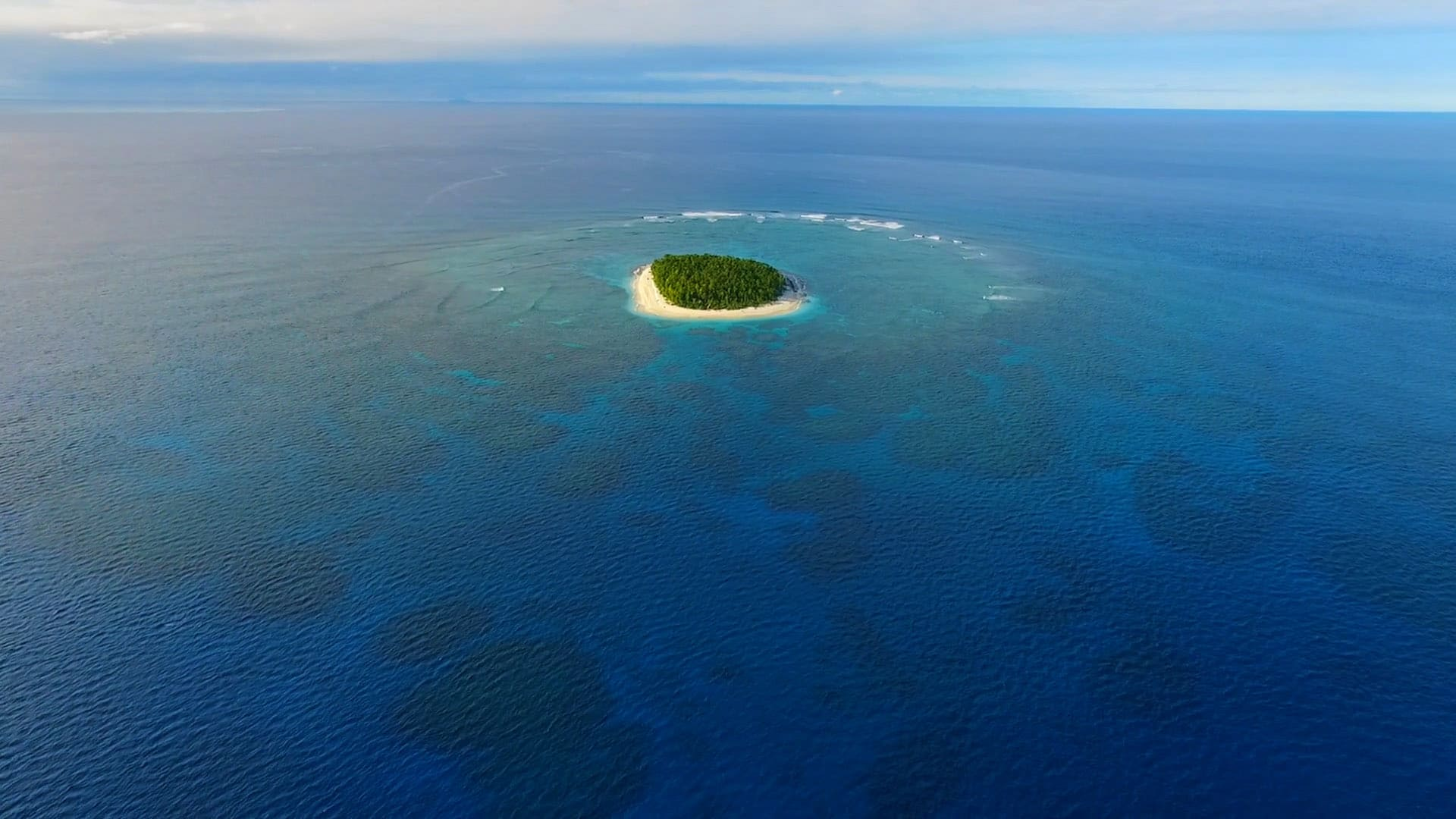 A remote desert island where our survivors enjoy alone